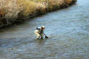 Donner summit fishing for Donner lake fishing report